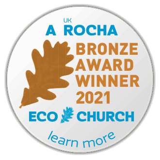 ec award buttons 2021 bronze